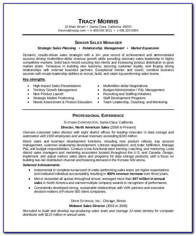 Editable Resume Templates Free Download