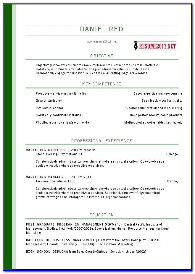 Microsoft Word Free Resume Templates 2007