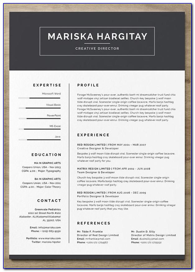 Free Creative Resume Template Word Doc