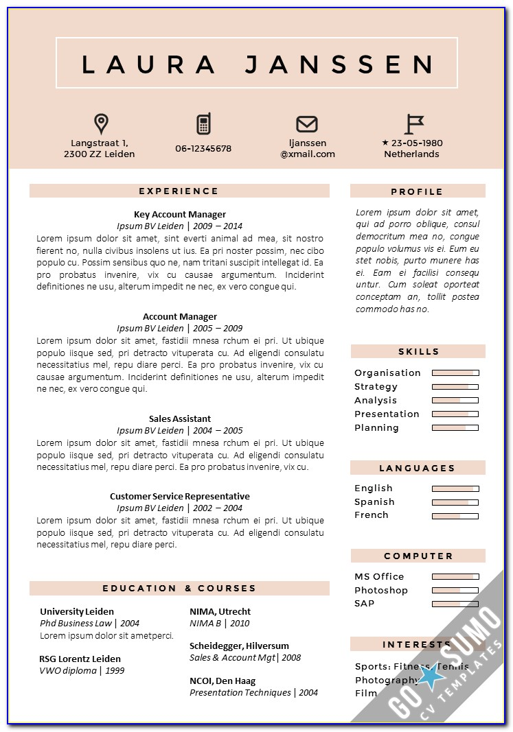 Resume Declaration Resume Templates Examples