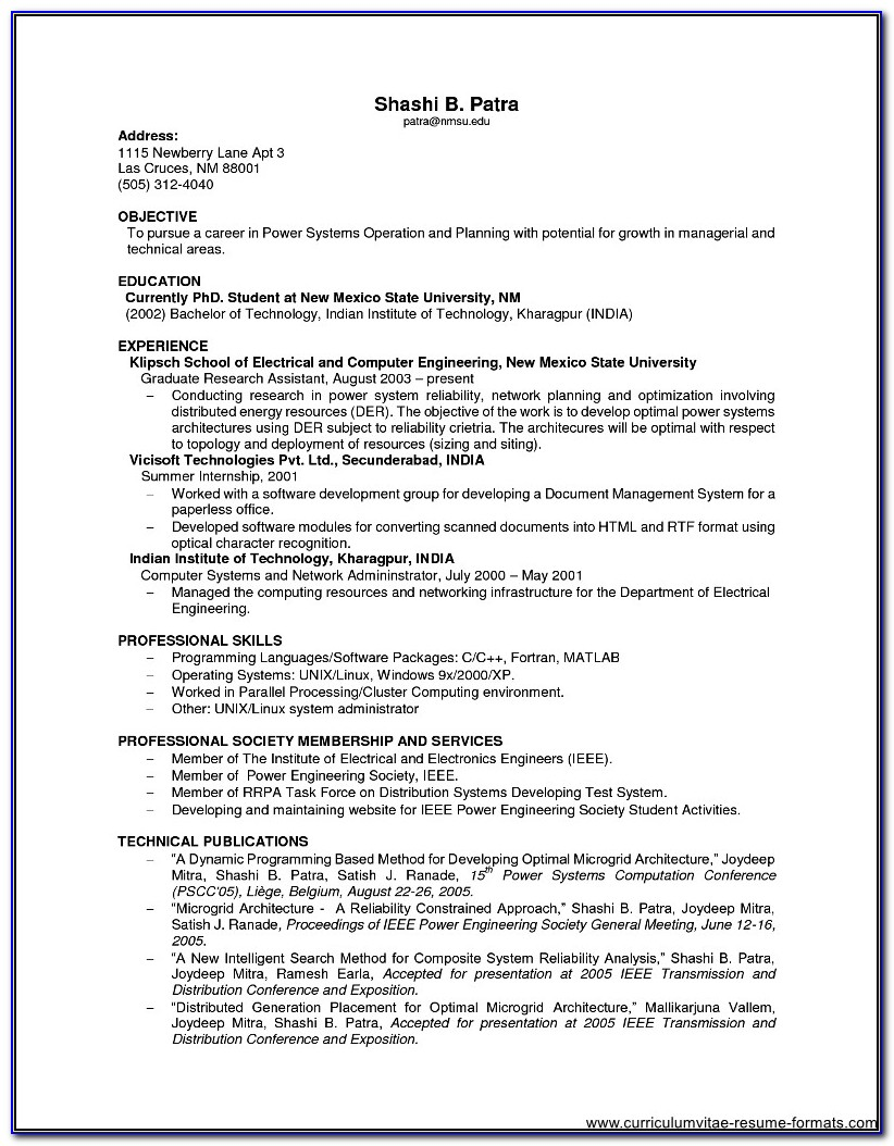 Sample Resume For It Professional Experience