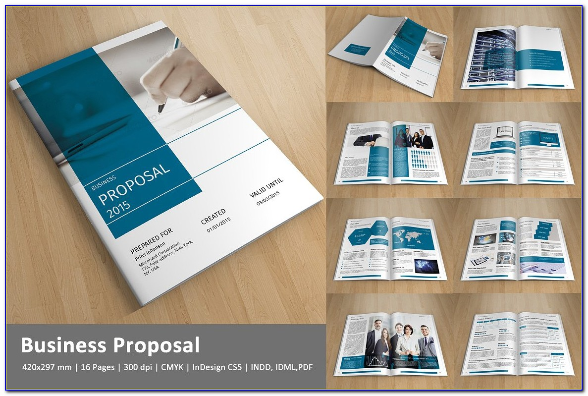 Business Proposal Indesign Template Free Download