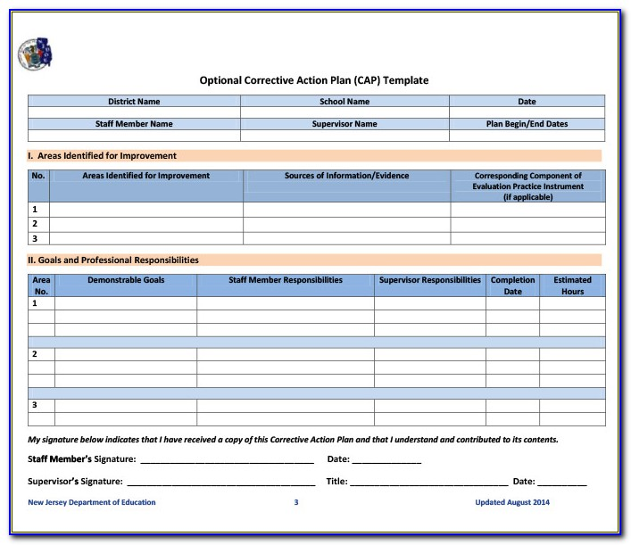 Corrective Action Plan Form