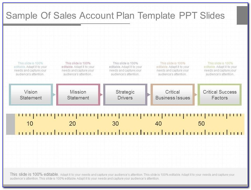 Free Strategic Account Plan Template Ppt