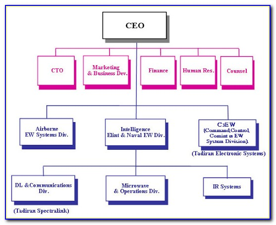 Non Profit Organizational Chart Template Free
