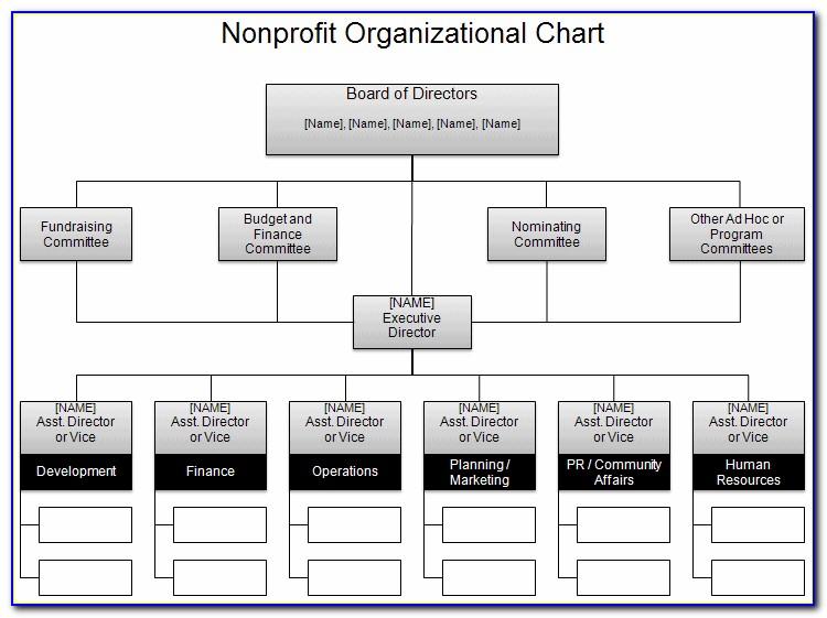 Non Profit Organizational Chart Template Word