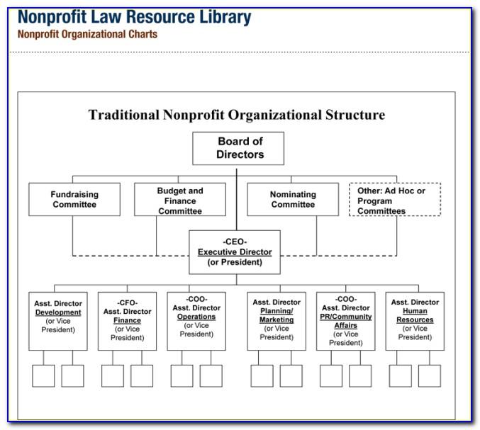 Non Profit Organizational Chart Template