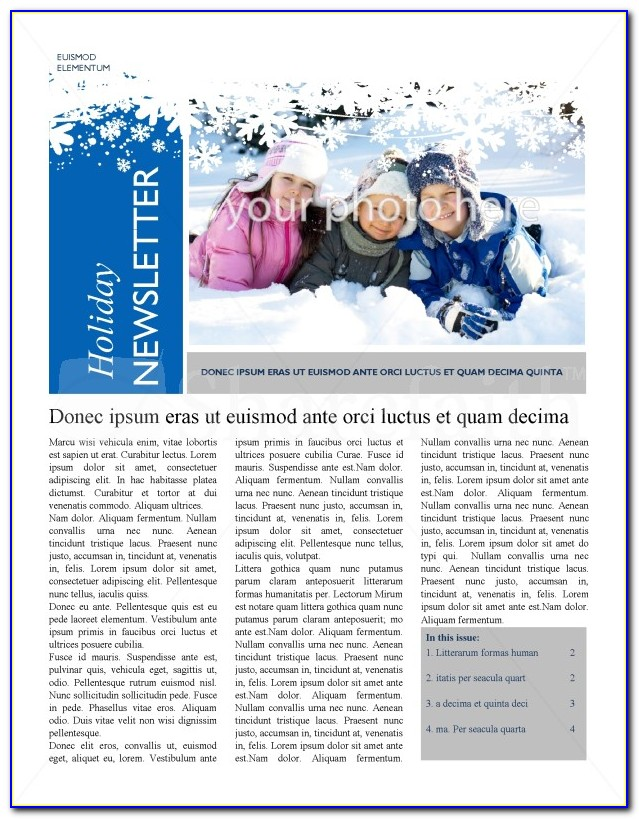 Winter Themed Newsletter Templates