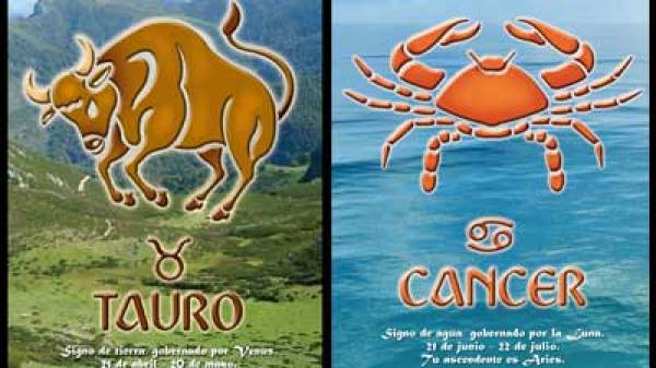 zodiac_signs_that_would_make_the_best_couples_05