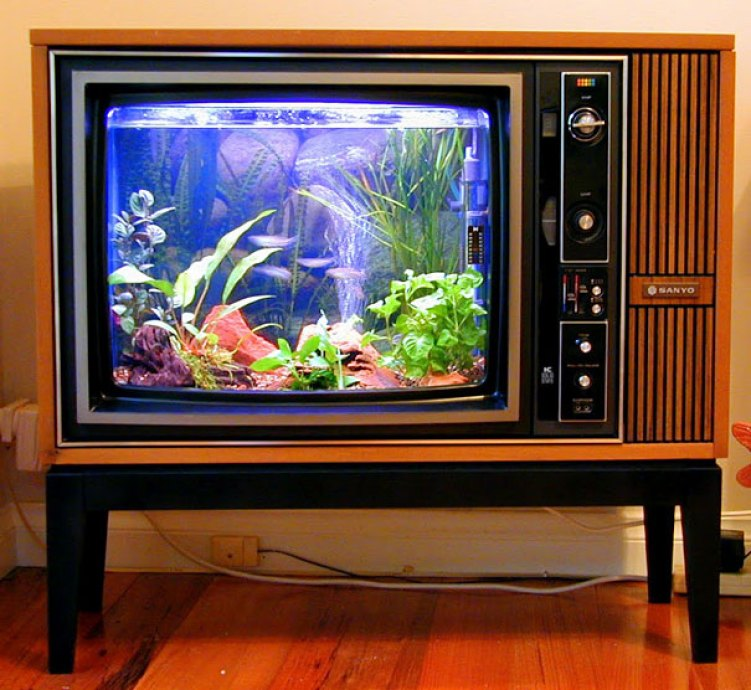 6. Old TV Turned Into Aquarium