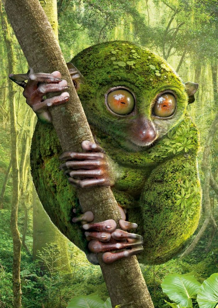 green-tarsier