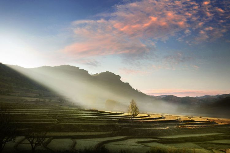 10-luminous-rice-terraces-kalaw
