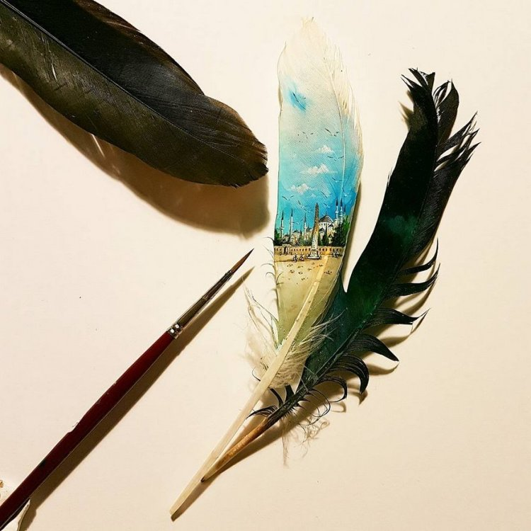 29-clean-view-in-roosters-tail-feather