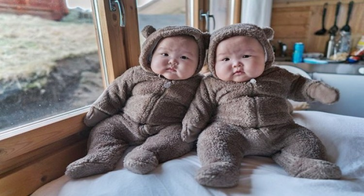 7-cute-twin-bears