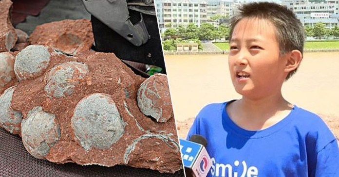 Chinese Boy Accidentally Finds 66-Million-Year-Old Dinosaur Eggs (1)