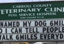30 Of The Funniest Outdoor Signs From This Vet Clinic That Dad Joke Lovers Will Appreciate