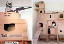 cardboard cat house cat castle
