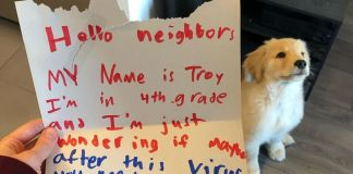 "10 Y.O. Boy Writes A Letter To His Neighbor Saying ""I'm Wondering If Maybe After This Virus You Need A Dog Sitter."""