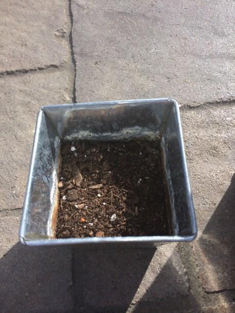 Tin with potting soil.