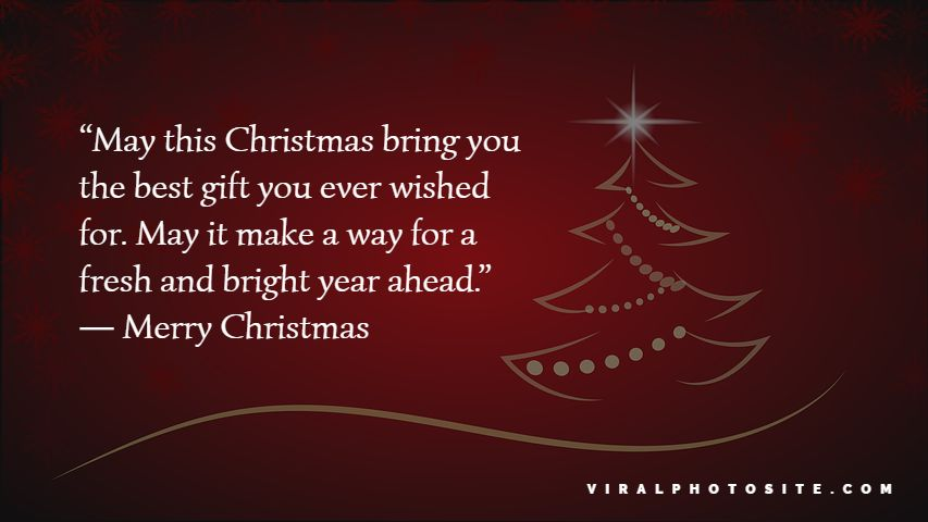 Merry Christmas Wishes Greeting Quotes Messages For Friends and Family