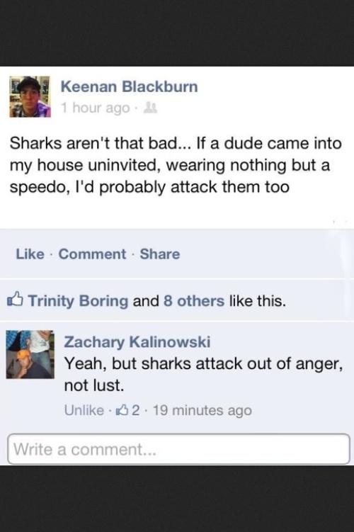 sharks_1440672791