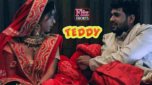teddy-2020-desi-hot-hindi-flizmovies-short-film