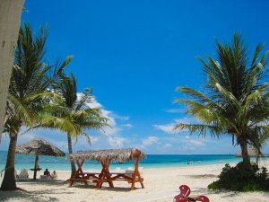 Grand Bahama Islands Services