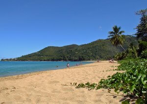 Guadeloupe Islands Services