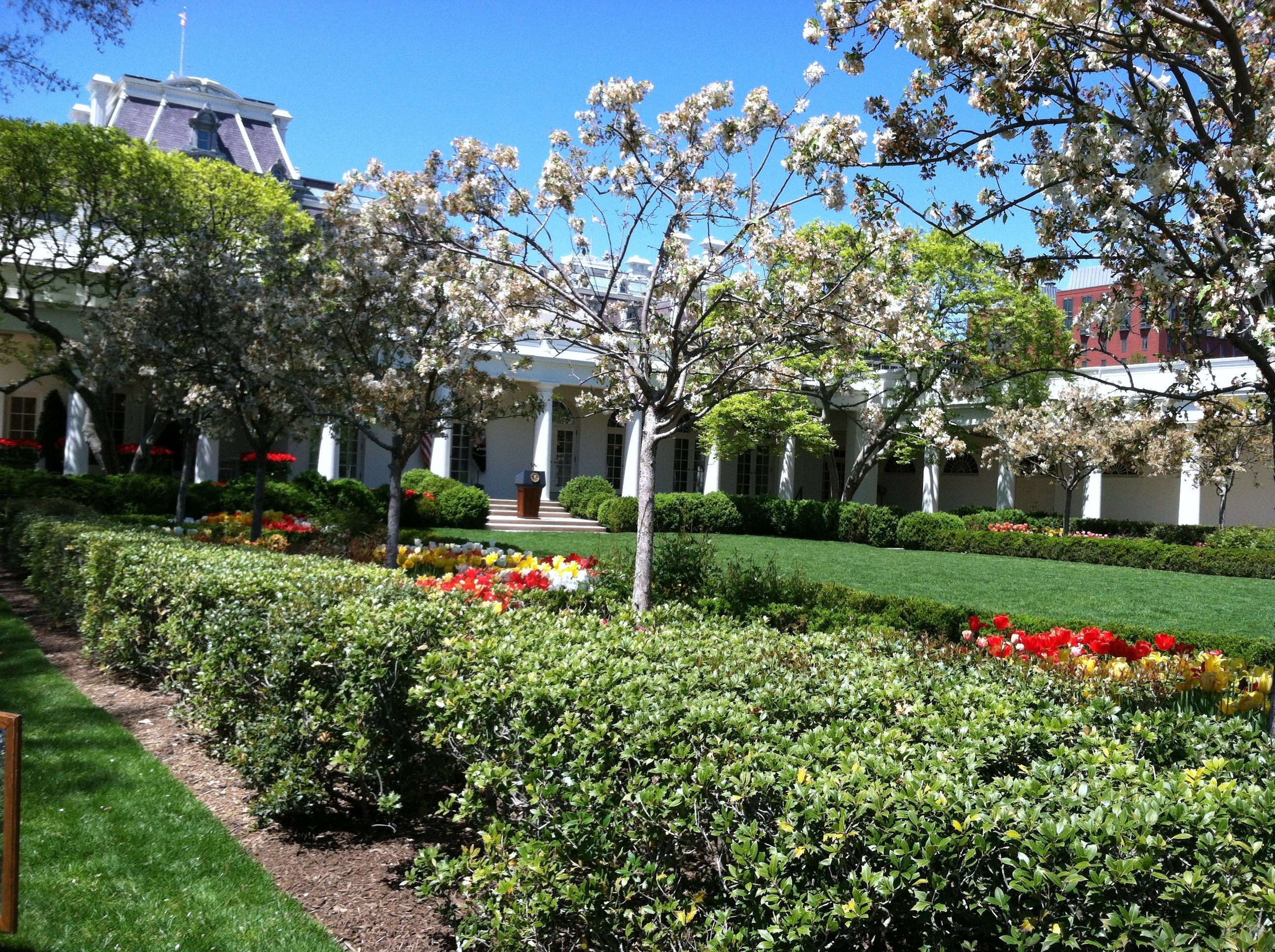 White House Rose Garden - Our Community Now at Virginia