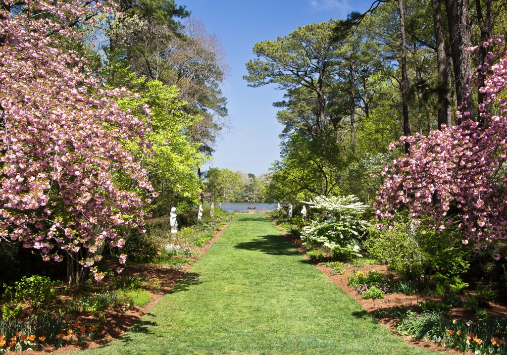 Norfolk Botanical Garden LanternAsia Light Display is Open Until May 13!
