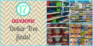 17 Awesome Things to Get at the Dollar Store!