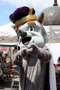 JMU's Duke Dog shows his spirit.