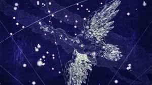Constelação do Cisne - Virginia Gaia