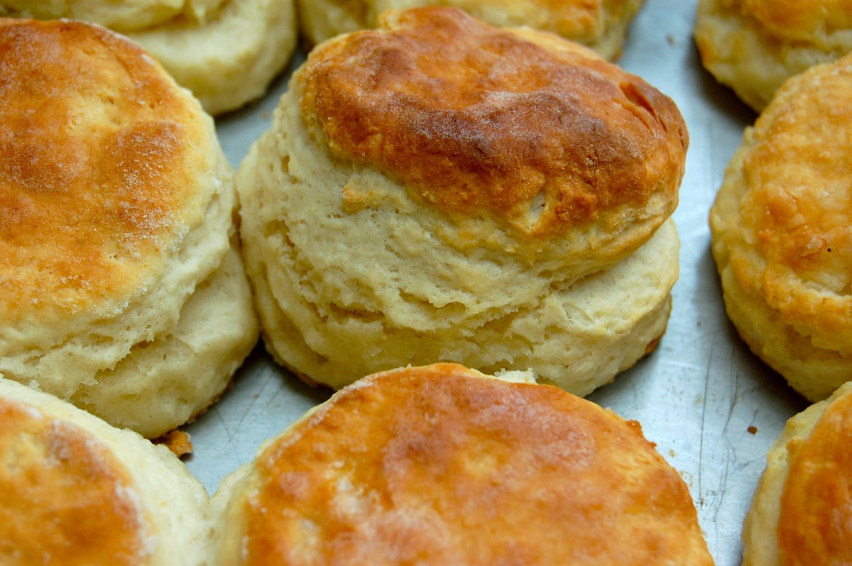 How to Make Biscuits on www.virginiawillis.com