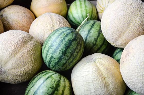 melons on www.virginiawillis.com