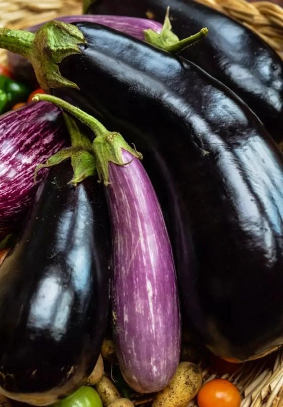 eggplant on www.virginiawillis.com