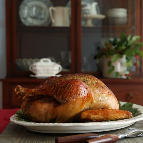 Turkey 101: Thanksgiving Tips and Techniques