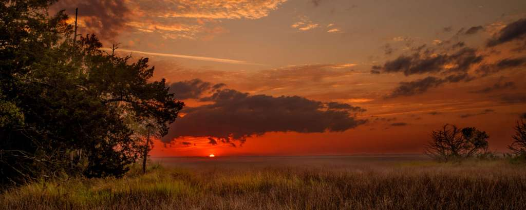Georgia's Golden Isles on virginiawillis.com