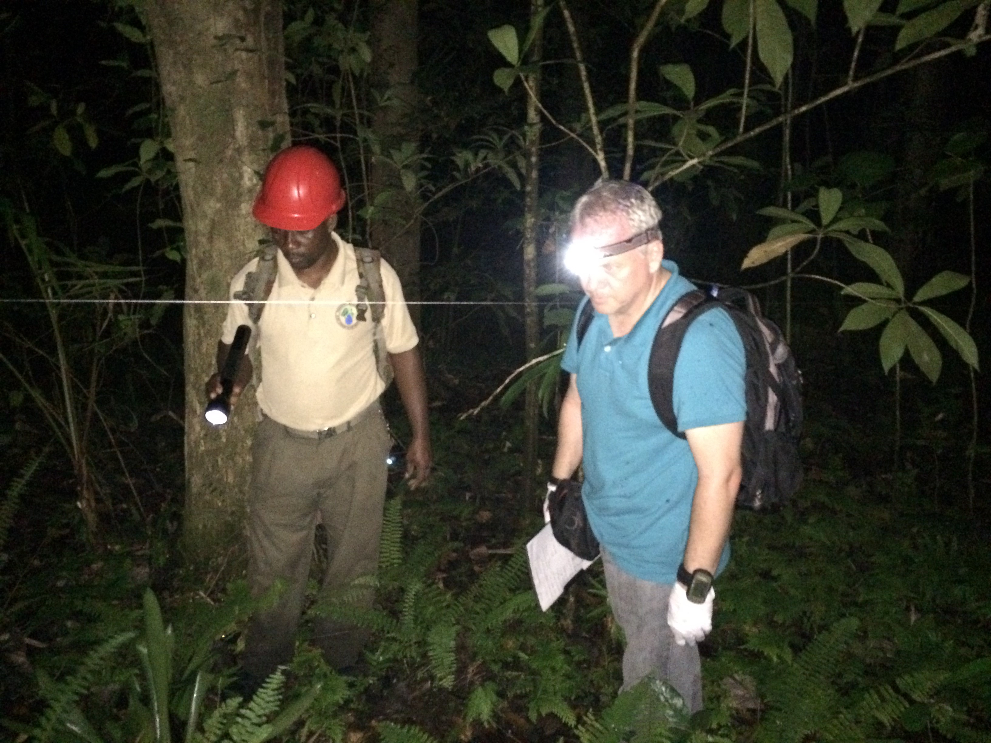 Roger and Glenroy working transect (2)