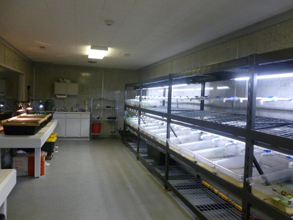 TSA Center nursery