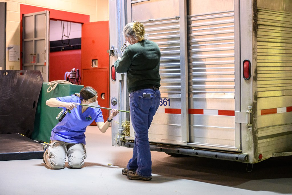 Two people standing outside enclosed trailer
