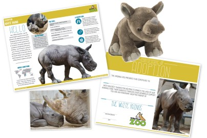 rhino zoodoption fact sheet certficiate photo