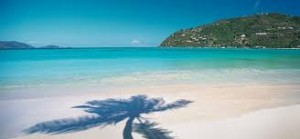 A palm tree shadow on the blue water of Magens Bay, one of the most beautiful beaches in the world.