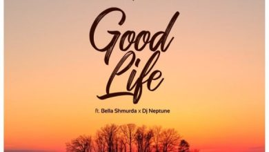 Photo of [Music] Bella Shmurda x DJ Neptune – Good Life
