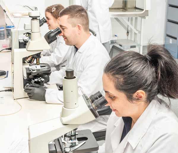 About Viridis Australia - Mould testing, assessments, analysis, diagnosis