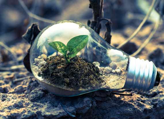 Sustainability ratings and certifications by Viridis Australia. Offices in QLD, NSW and ACT