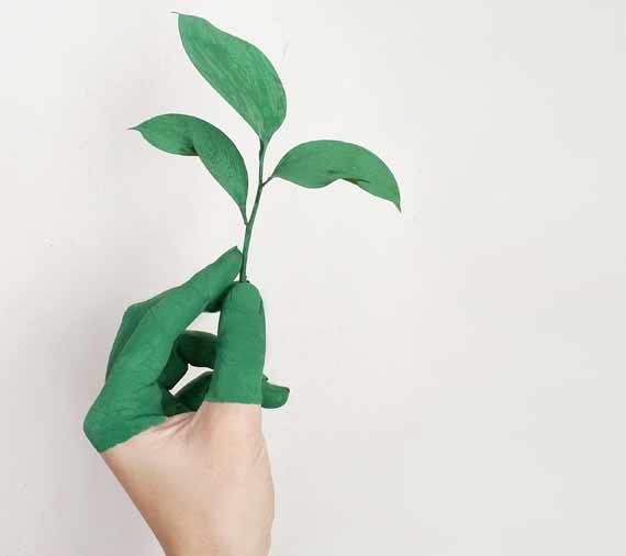 Green Sustainability ratings and certifications by Viridis Australia. Offices in QLD, NSW and ACT.