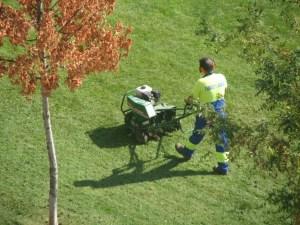 Lawn Care in Utah Hire a Service