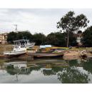 boats-800-sq