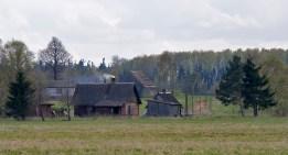(c) Risto Lammin-Soila